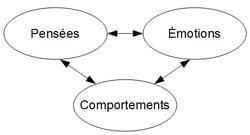 Cercle vicieux etre pensées, émotions et comportements